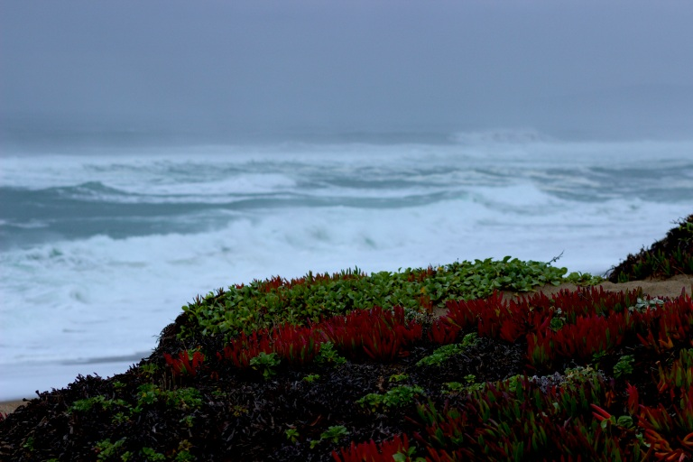 Norcal stormy beach